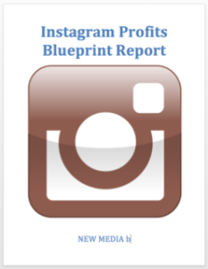Instagram-Profits-Blueprint-Report-30