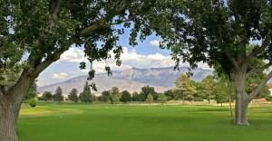 Desert Greens Golf