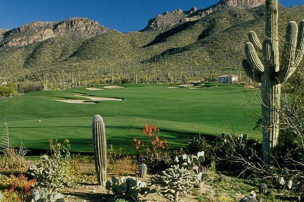 Arizona National GC