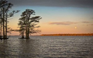Albemarle Sound near the Outer Banks, N.C.