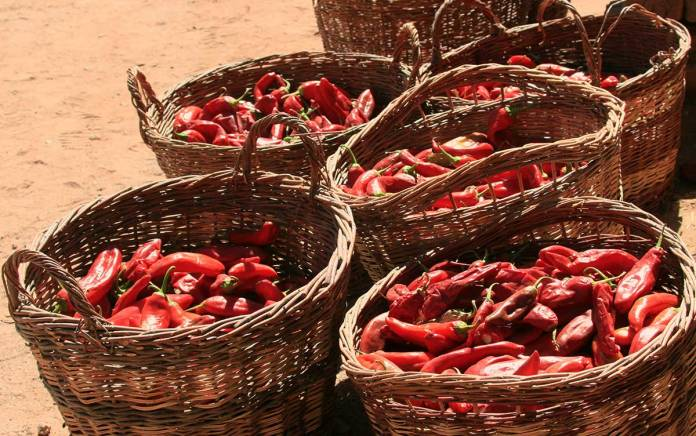 Baskets of red chile
