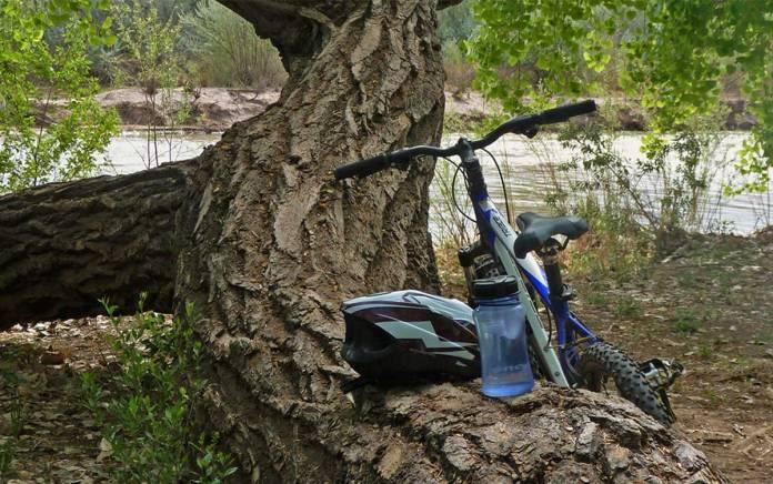 Biking in the bosque