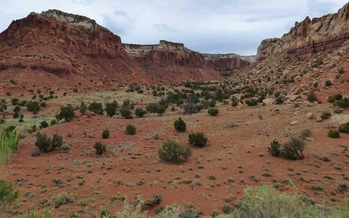 Red cliffs around Ghost Ranch