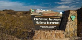 Prehistoric Trackways National Monument