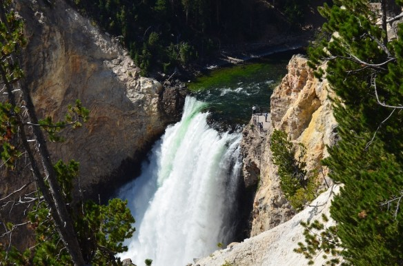 Two large waterfalls on the Yellowstone River mark its drop from the Hayden Valley into Yellowstone Canyon — the Upper Falls and the — wait for it — Lower Falls. This is the taller of the two, Lower Falls — the river drops 308 feet (94 m).