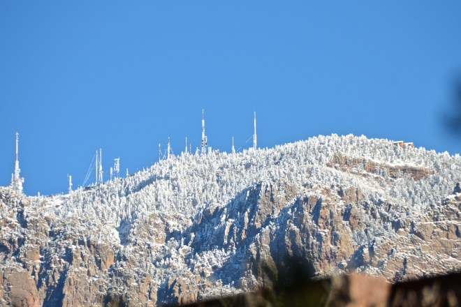 Sandia Crest, the Electric Forest  January 15, 2015  Click for larger version.