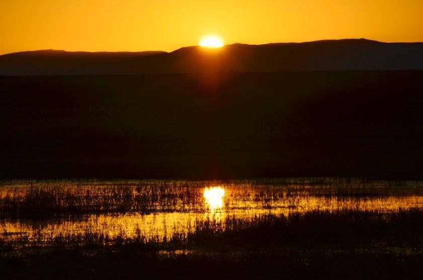 Sunrise, Bosque del Apache National Wildlife Refuge, February 10, 2016