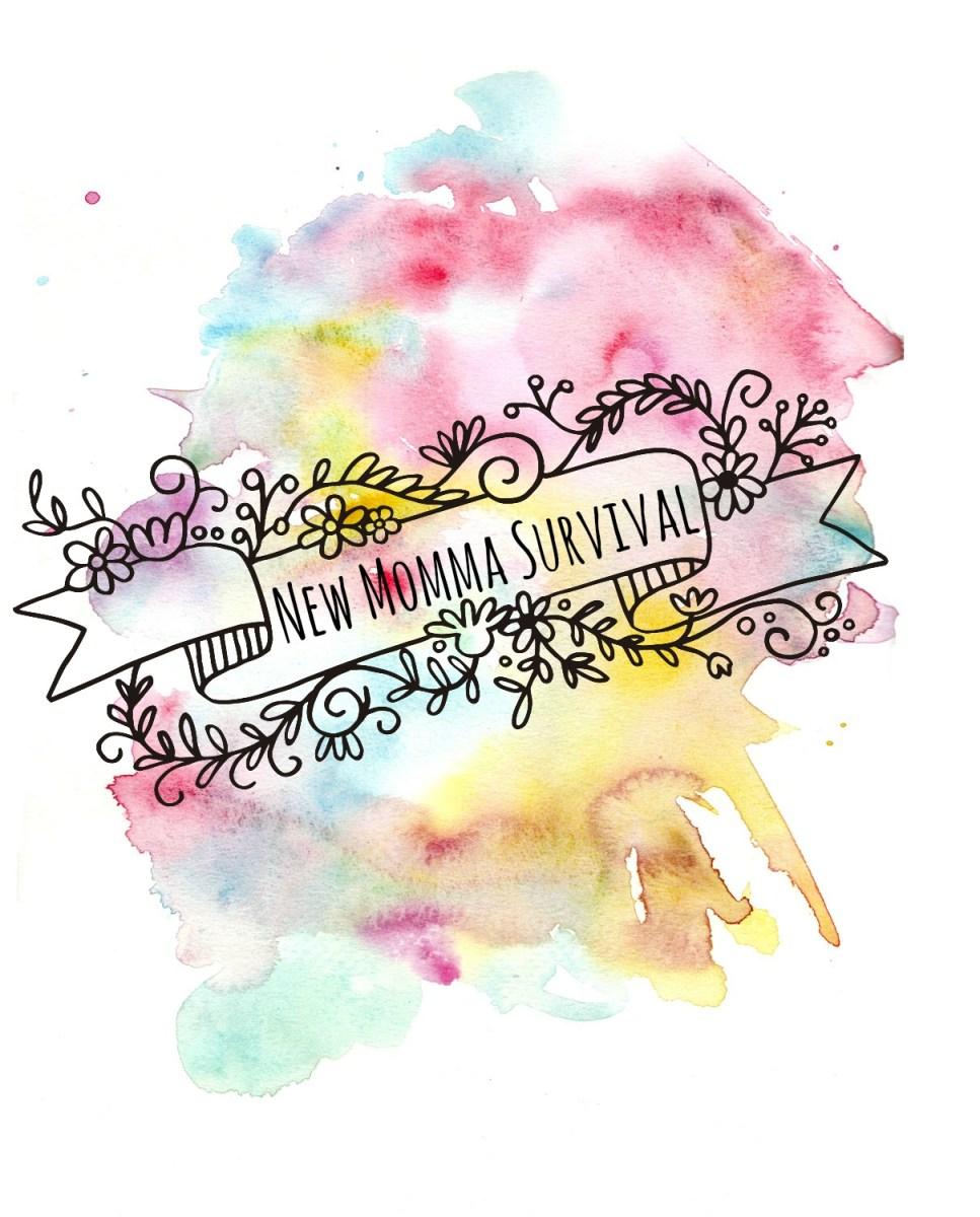 new momma survival blog