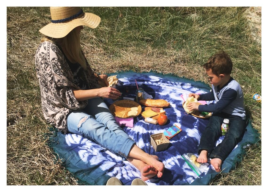 colorado picnic