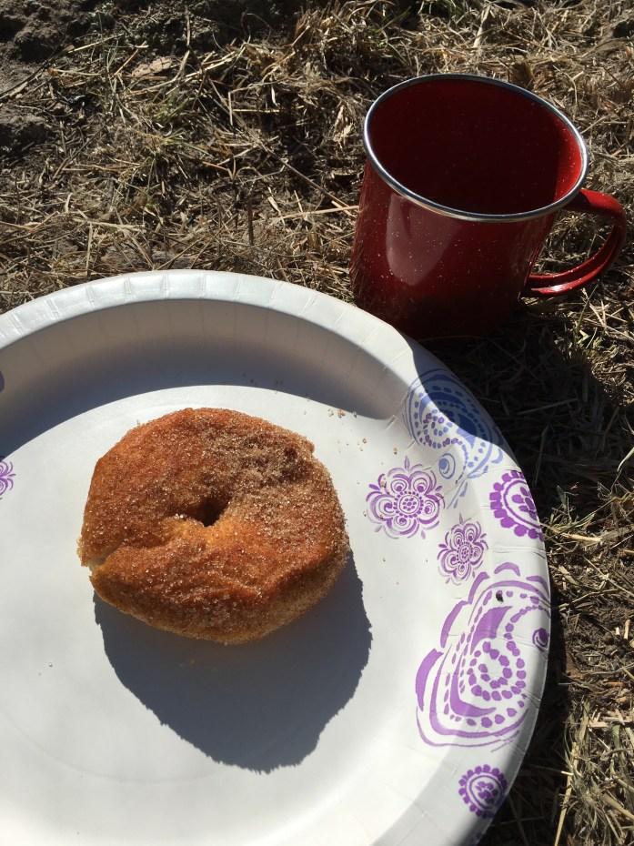 camping donuts