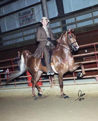 rkb-sizzle-saddle-du