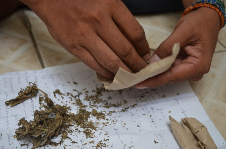 Cannabis - New Naratif