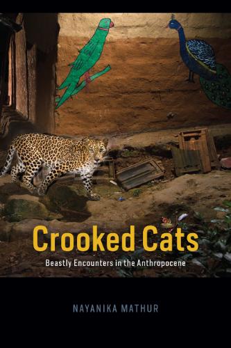 Mathur, Crooked Cats