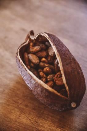 カカオは発酵食品だと初めて知りました。