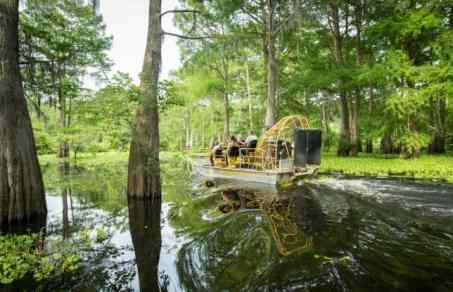 Airboat New Orleans Swamp Tour Adventure
