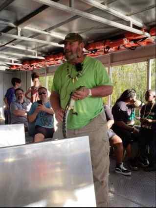 Tour Guide Alligator