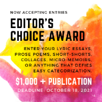 New Letters 2021 Editor's Choice Award banner