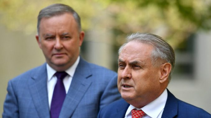 Anthony Albanese and Don Farrell