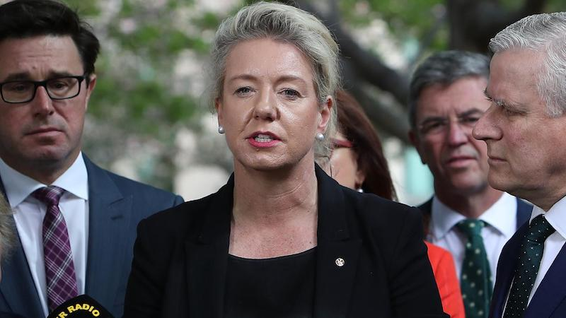Bridget McKenzie, corruption, sports rorts