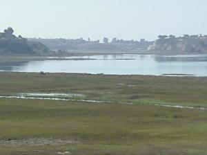 Tidelands of Upper Newport Bay