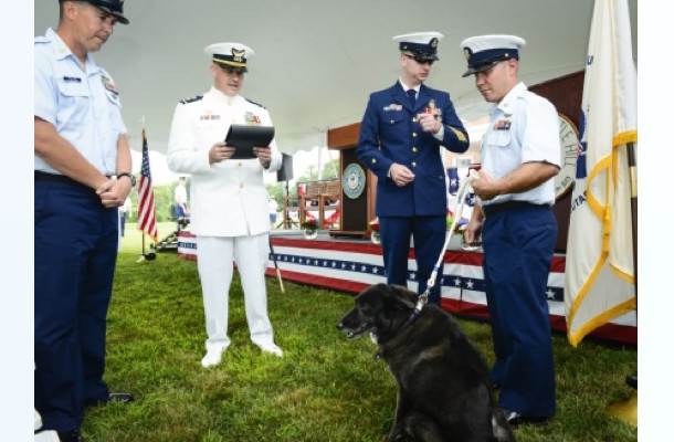 Newport RI Coast Guard Dog Ida