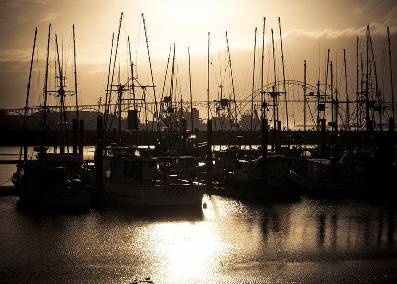 Yaquina Bay in the Late Afternoon