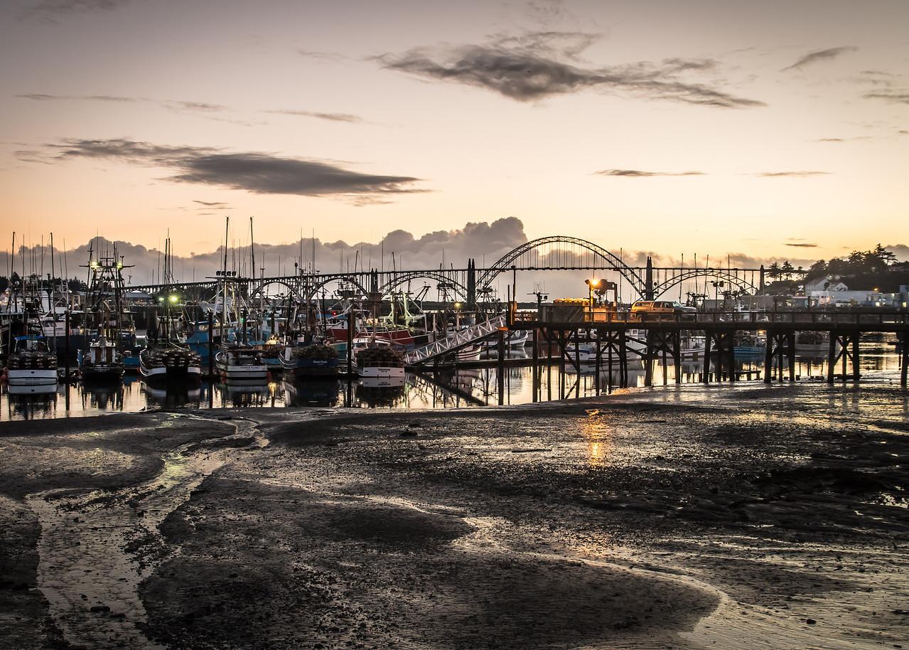 Yaquina Bay Fishing Fleet at Low Tide