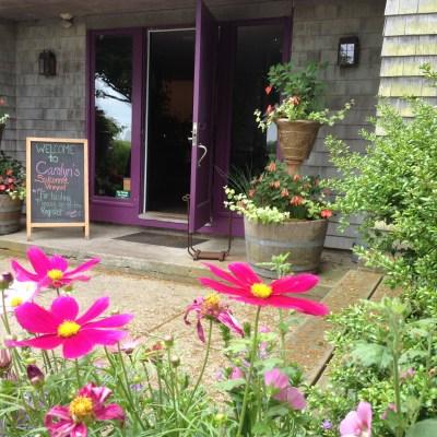 Rhode Trip: Carolyn's Sakonnet Vineyards