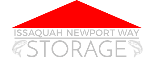 Storage-in-issaquah-logo