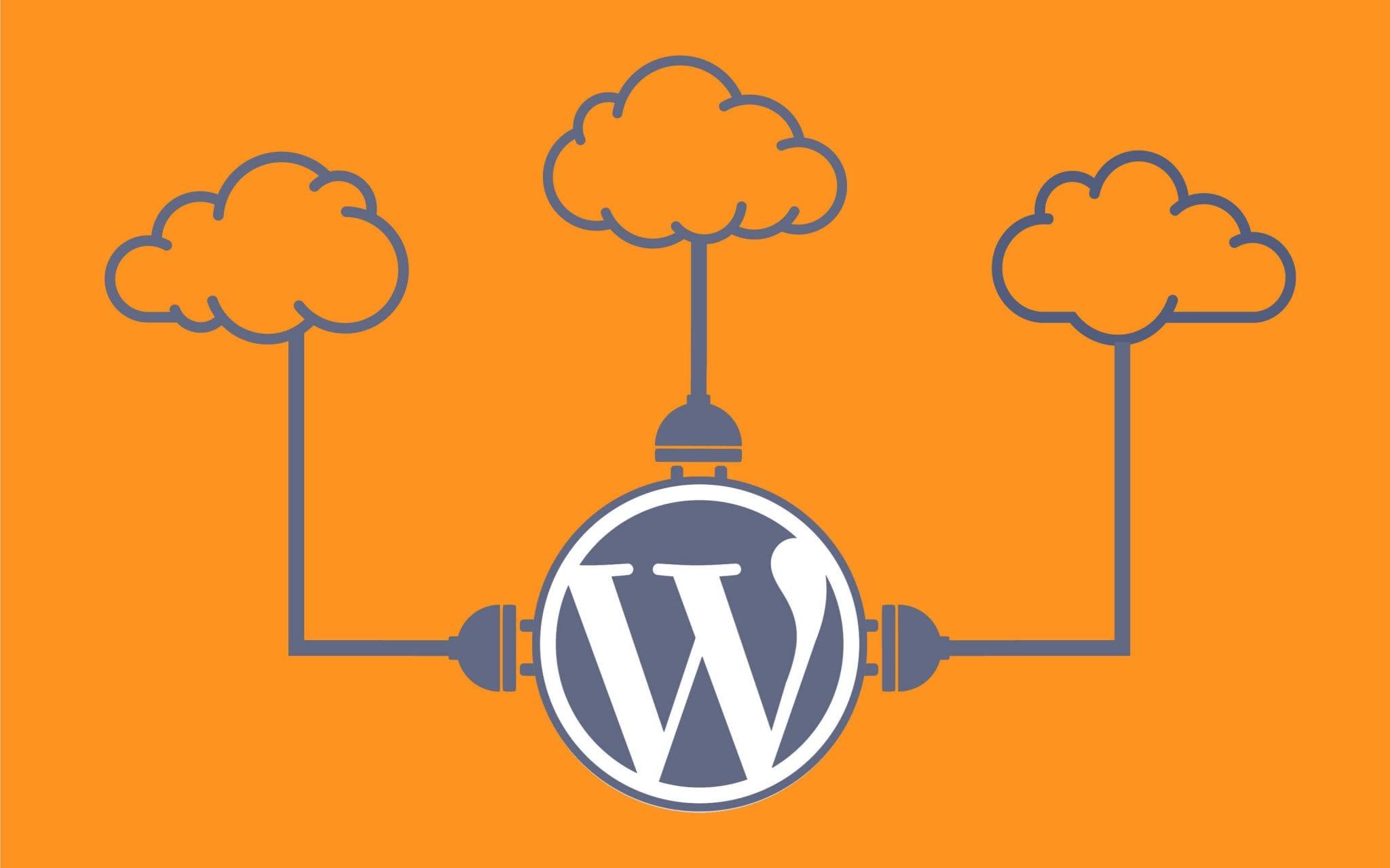 The Future of WordPress Plugins