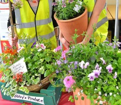 Cornwall Air Ambulance Plant Sale Open Day