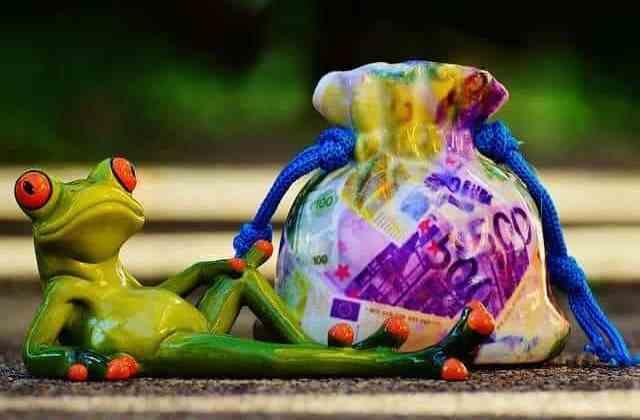 plastic frog lying down with money sack