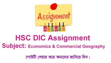 HSC BM Economics and Commercial Geography Assignment Answer