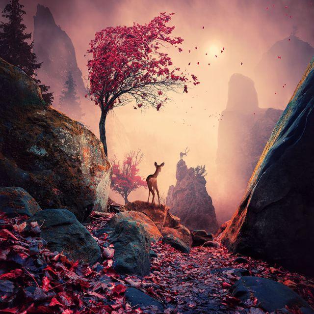 Majestic-light__880