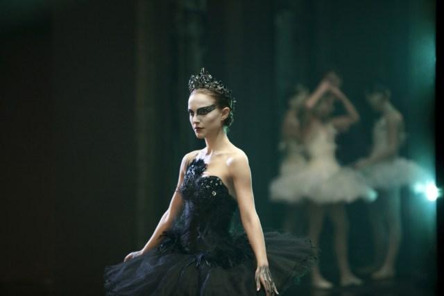 Black-Swan-black-swan-19509962-2560-1706