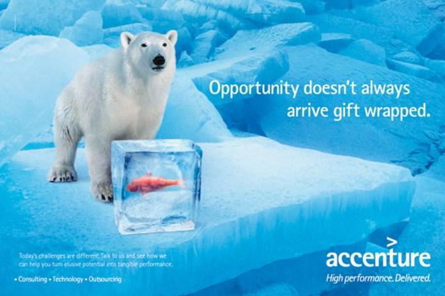 accenture_polar_bear_airport_advertisement