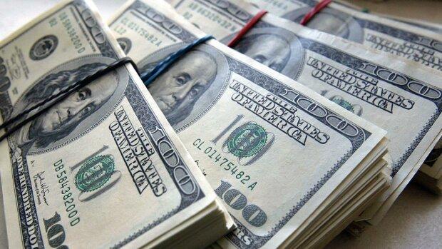 Доллар упал ниже 24 гривен: курс валют в Украине на 27 ноября