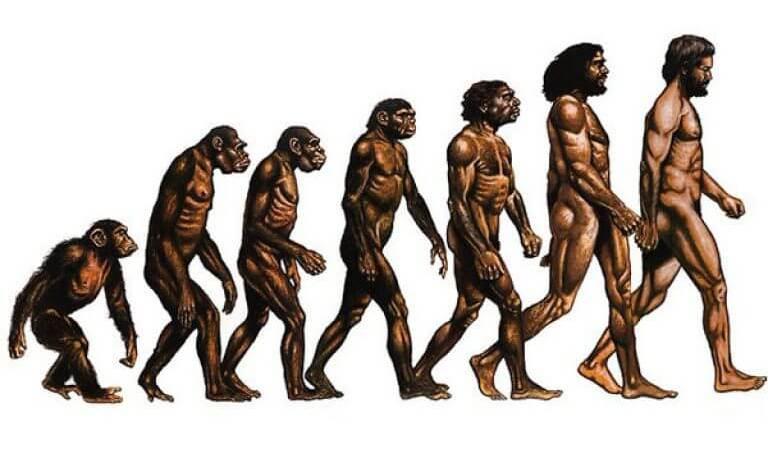 Создана новая теория возникновения жизни на Земле