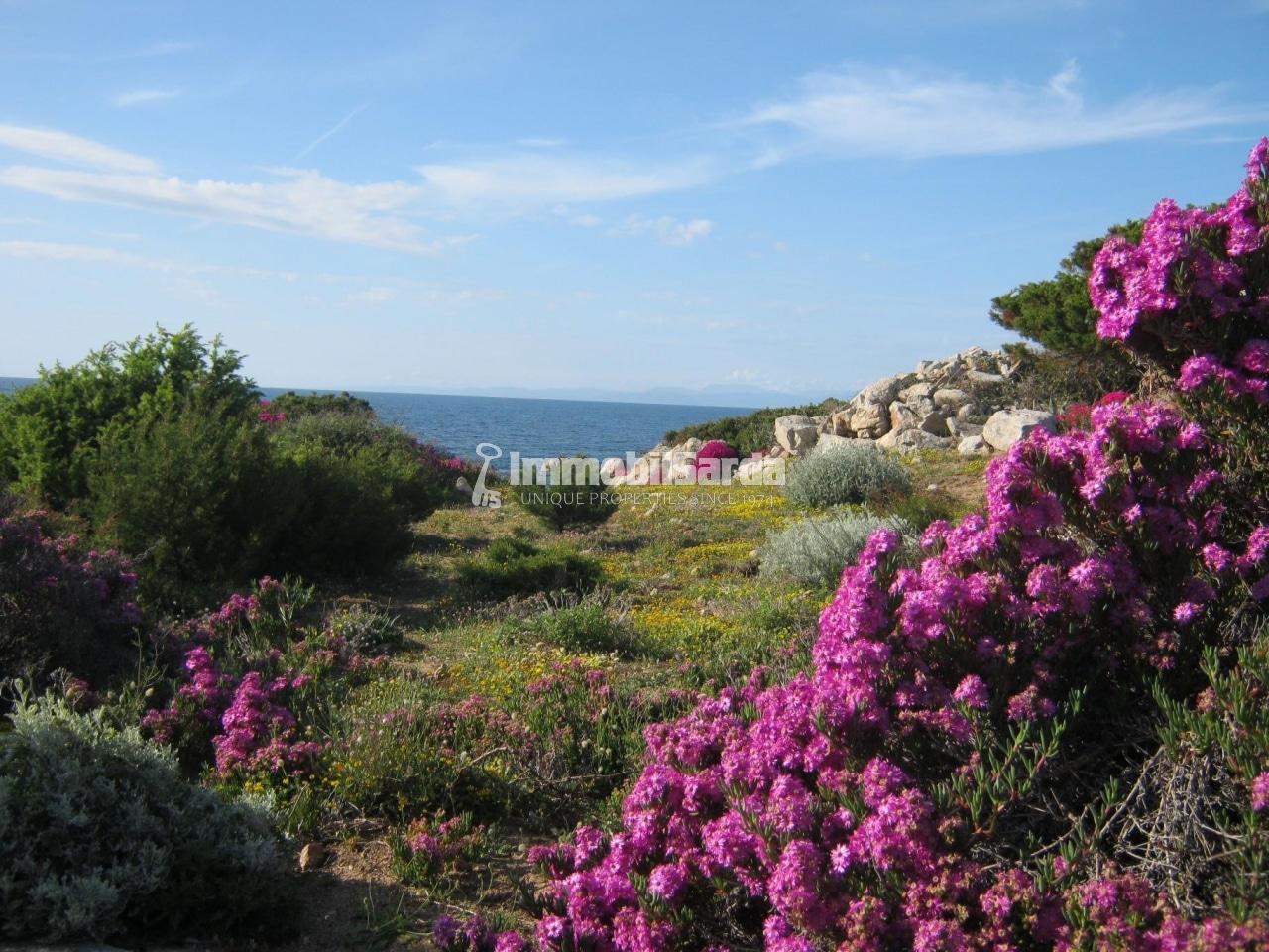Portobello - Lotti edificabili sul mare