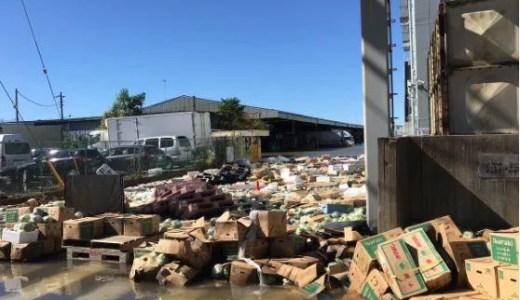 さいたま市桜区 荒川付近の羽倉橋 治水橋が冠水で氾濫?浦和卸売市場やレッズランドが浸水で水没 台風19号