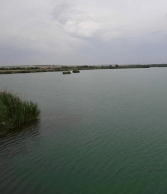 Cпасатели подняли со дна водоема тело подростка на Ставрополье
