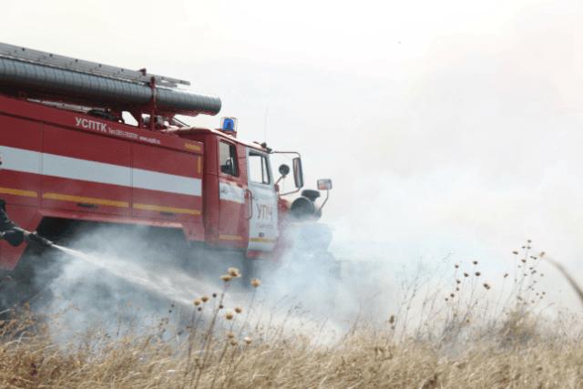 Cпасатели и пожарные потушили возгорание площадью 40 гектар