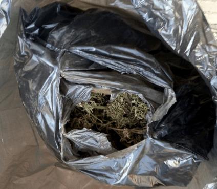 В Курском районе из незаконного оборота изъяты наркотические вещества