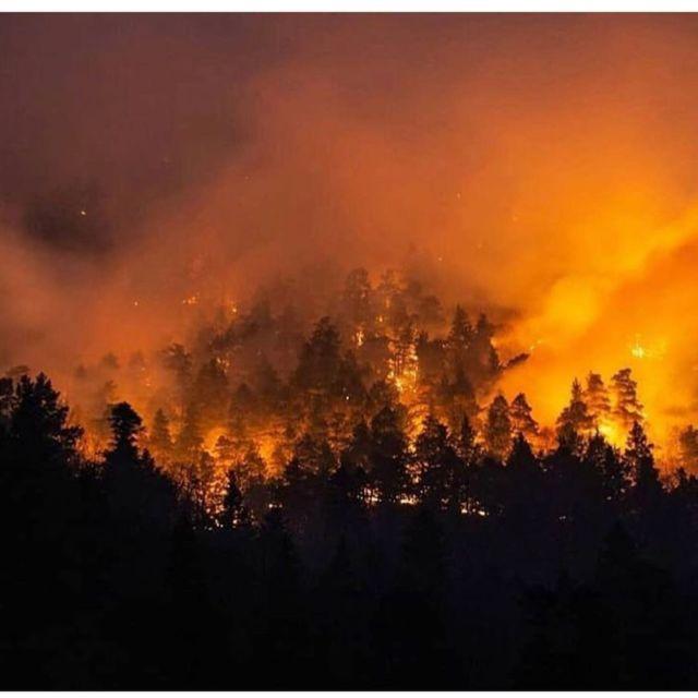 Несколько дней не могут потушить спасатели крупный пожар в заповедной зоне Архыза