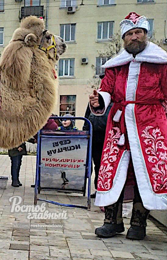 Фотограф в костюме Деда мороза ругался матом и требовал деньги с отца ребенка в Ростове