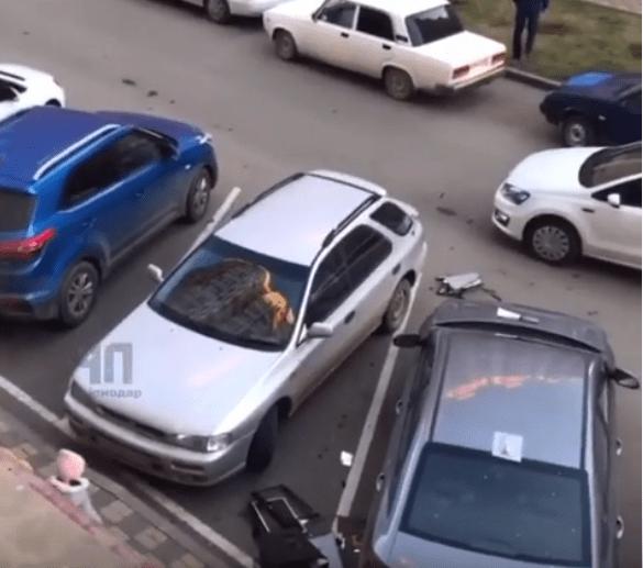 Жители многоэтажки выбросили на припаркованные машины ноутбуки и компьютер в Краснодаре