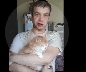 Фото кошки мужчины руки (44 фото) | 232x275