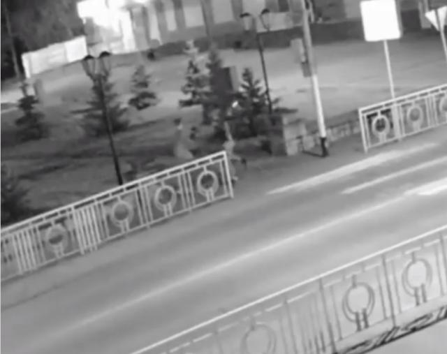 На видео попали разбившие каменные тумбы вандалы на Ставрополье
