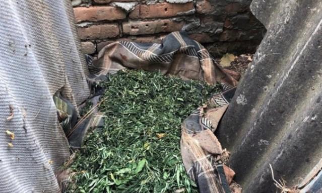 Житель Кировского округа организовал в своем доме наркопритон