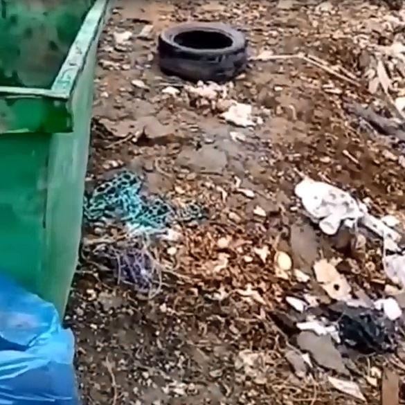 """Жители Минераловодского округа пожаловались на невыносимый запах """"мусорки"""""""